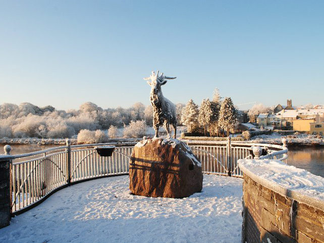 Killorglin's King Puck in winter