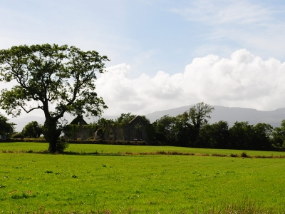 View back onto Milltown Abbey, Kerry