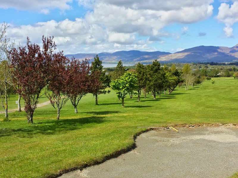 Killorglin Golf Club, 9th Green, Sliabh Mish Mountains in the background